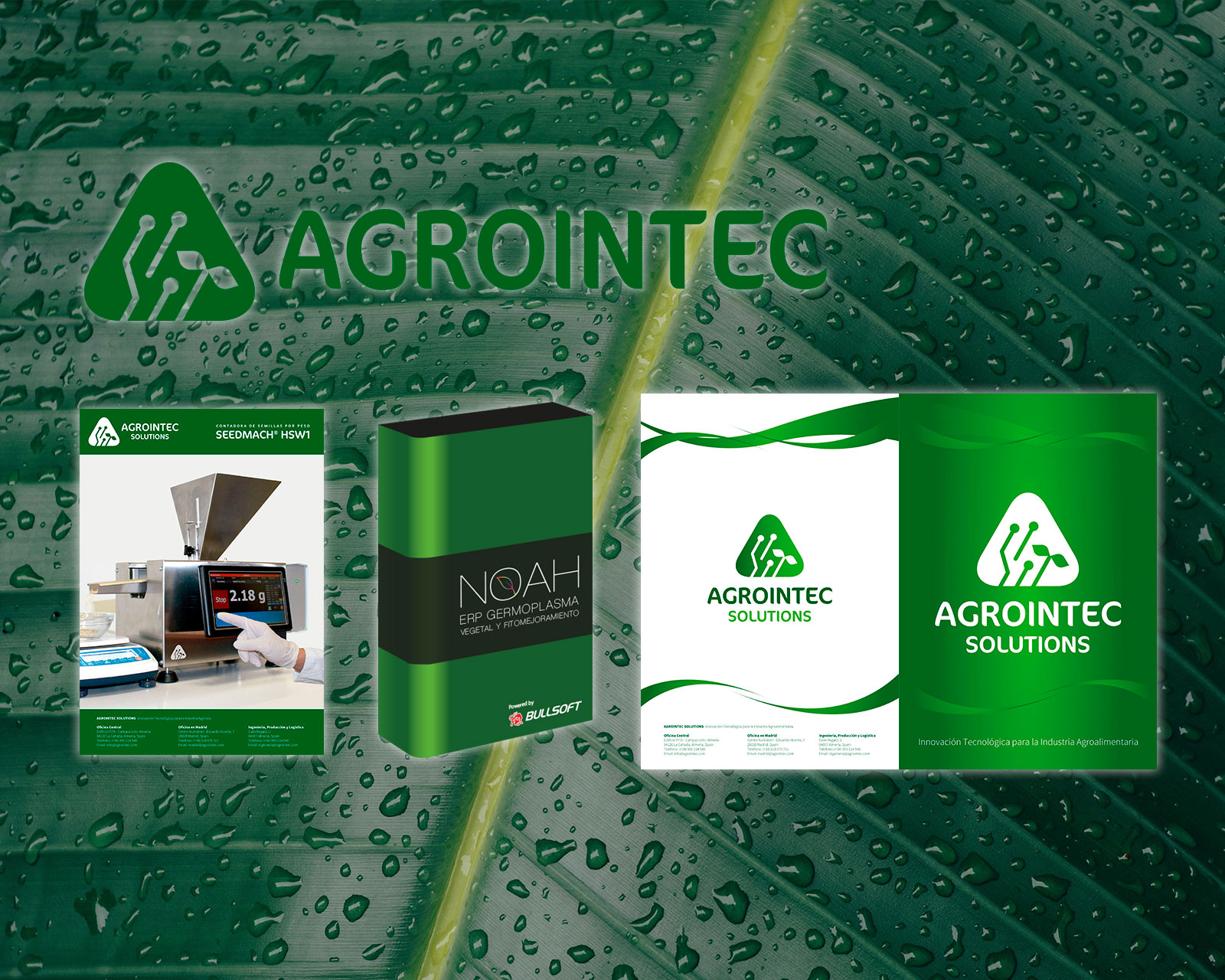 Corporate Identity AGROINTEC